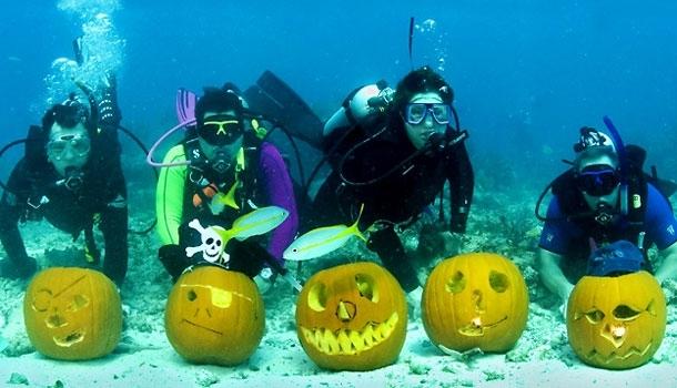 En Floride, Halloween se passe… sous la mer!