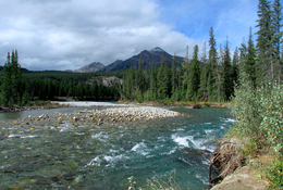 Jasper Raft Tours photo 4/4