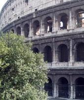 Les nuits romaines bientôt plus chères