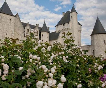 Le Château du Rivau : passer un séjour digne des plus grands rois