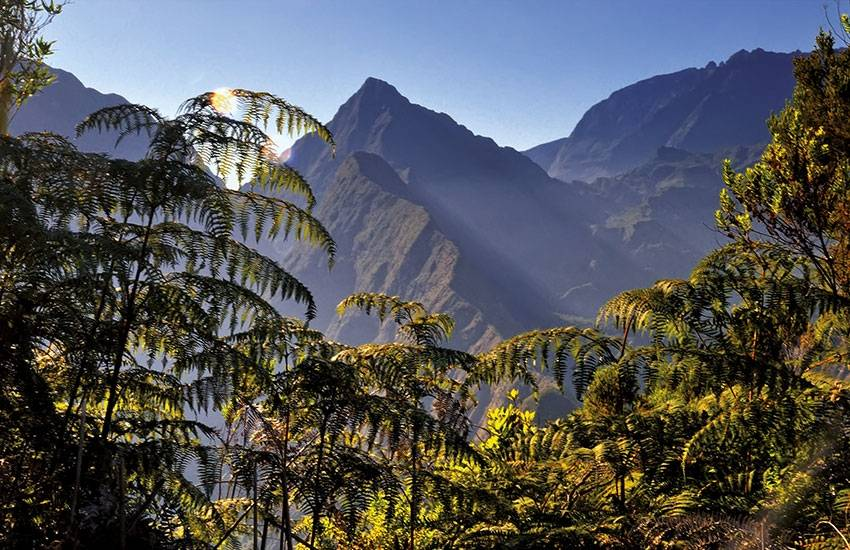 Réunion: a gay-friendly stop in the Indian Ocean